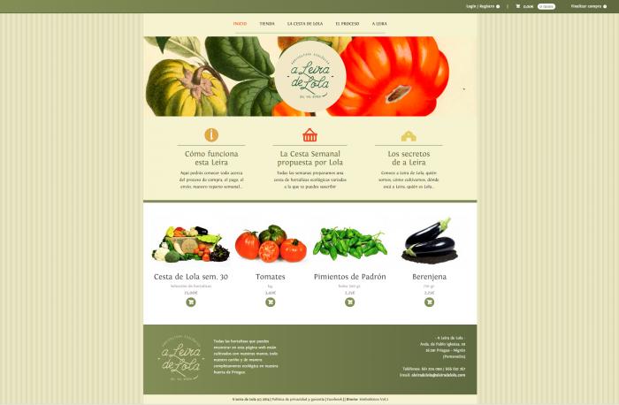 Plantexamento web A Leira de Lola
