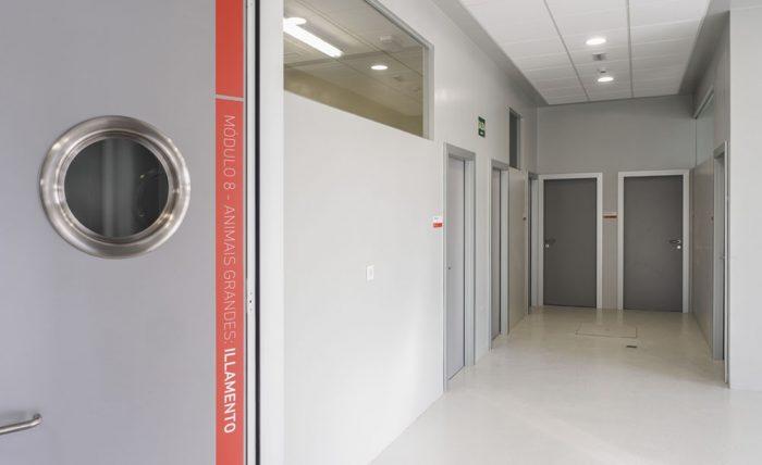 Sinalética Cebiovet. Identificación interior